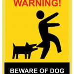 Protect Yourself from a Dog Bite Claim in Burien, WA