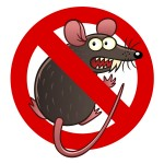 Prevent Rodent and Rodent Damage in Burien, WA