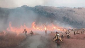 Firefighters battling the Okanogan Complex fire. Photo: Kris Hayes Torgeson.